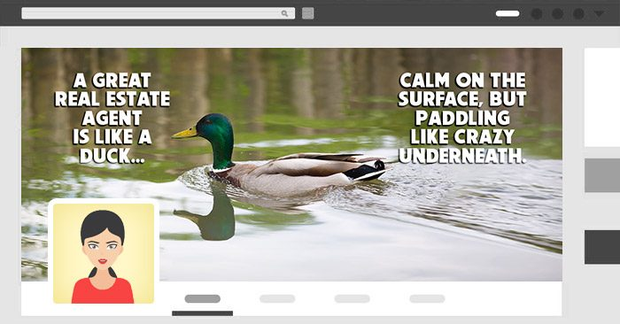 duck-agent-cover-solo